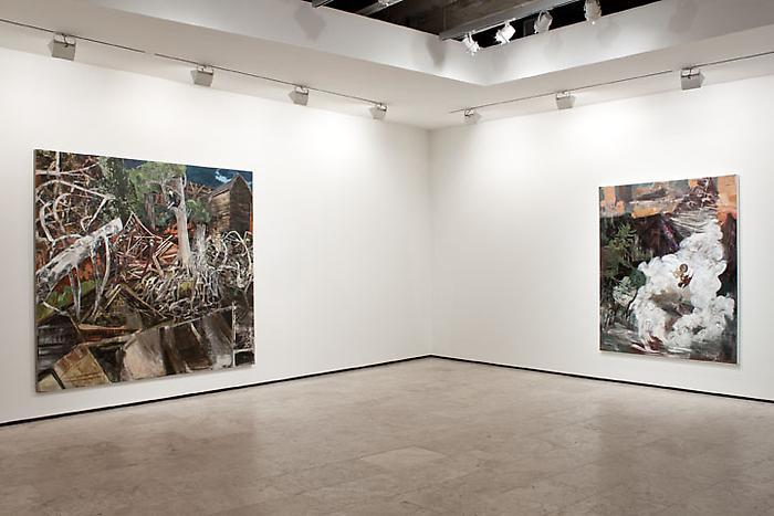 Hernan bas - exhibitions - lehmann maupin such as